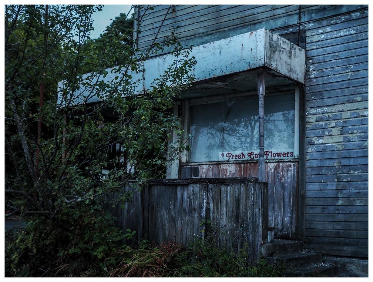 Abandoned Washington Pacific Northwest