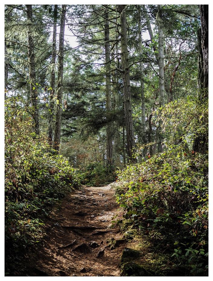 Goose Rock Deception Pass Washington