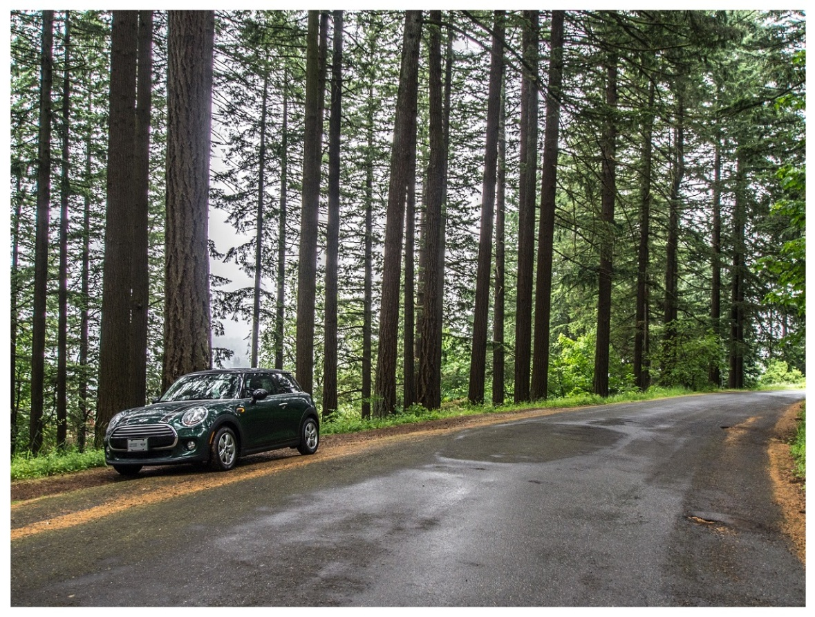 My Mini Cooper on Mt Tabor