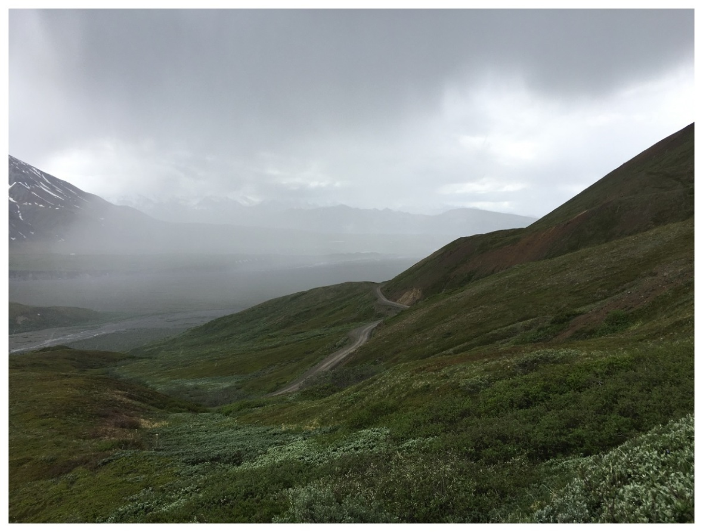 rain mist tundra nature