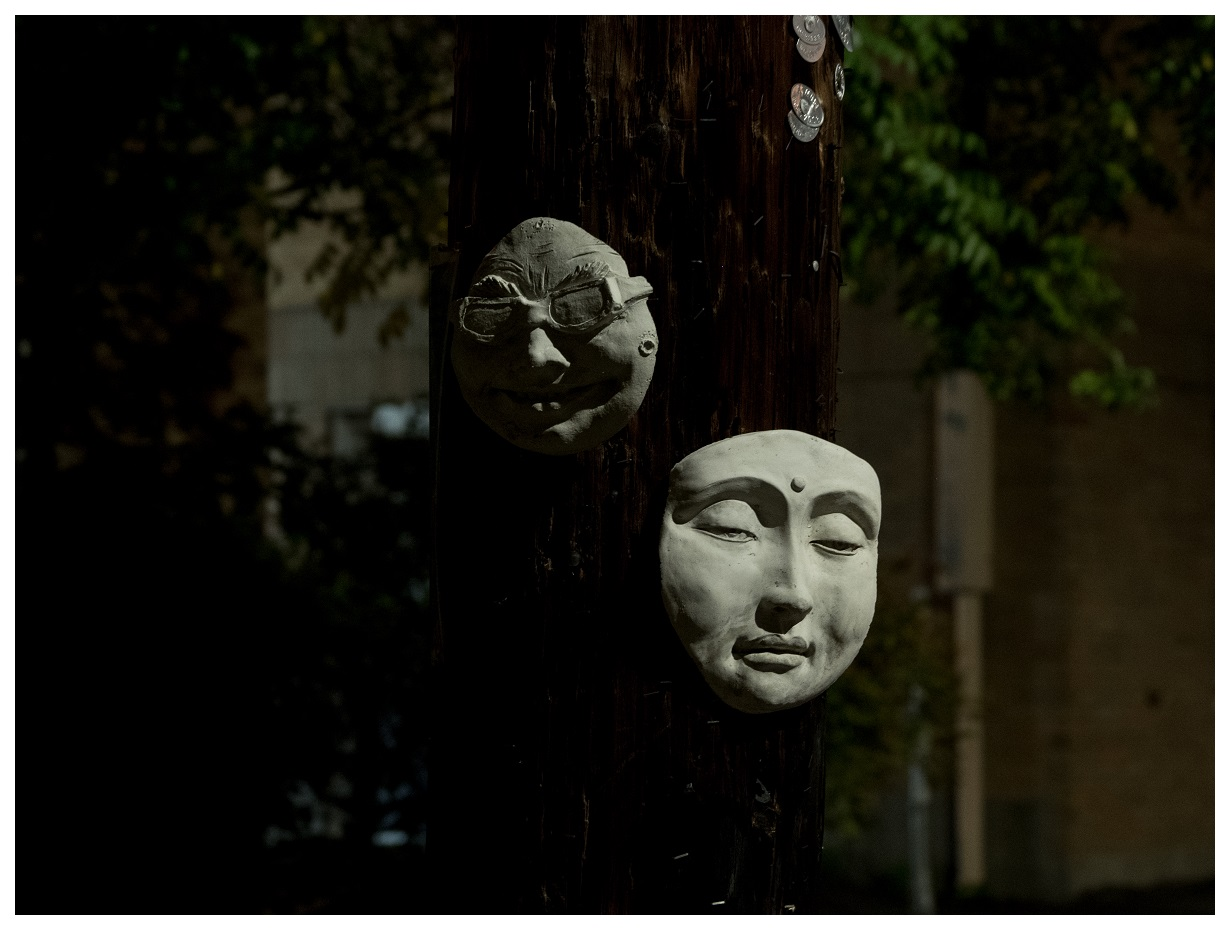 Masks on electrical poll